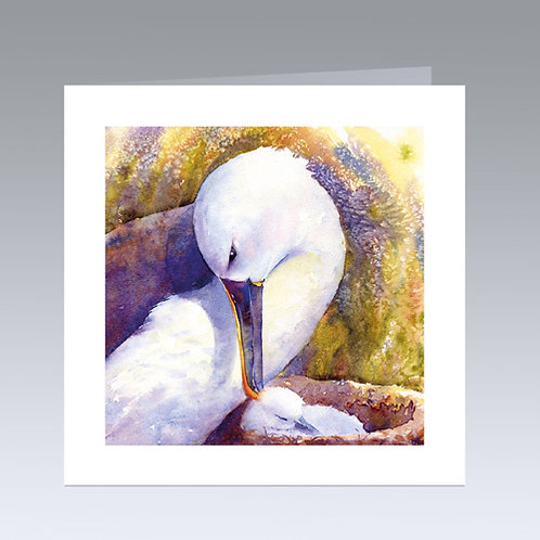New Chick in the Nest (albatross) card