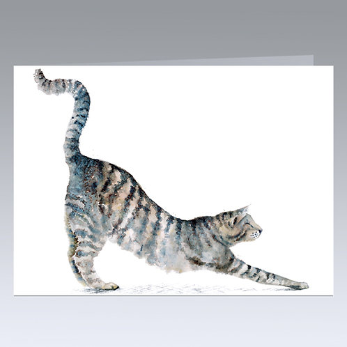 Cat Yoga card