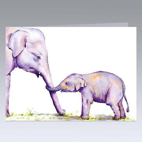 The Bond (Indian Elephants) card
