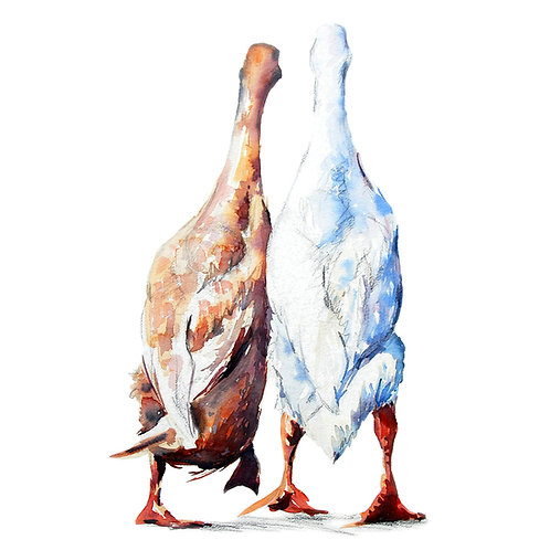 Signed, Limited Edition Print Boris & Doris (runner ducks)