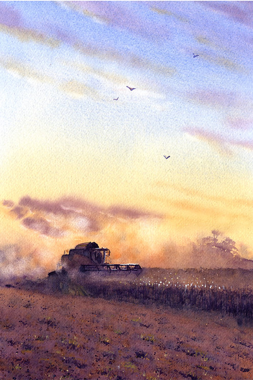 Signed, Limited Edition Print Barley Mow