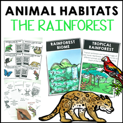 Animal Habitats The Rainforest Biome