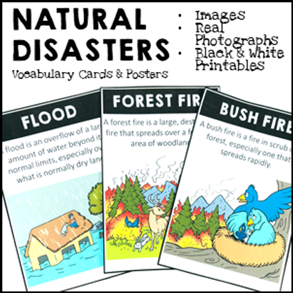 Natural Disasters Vocabulary Cards and Posters