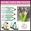 Thumbnail: Sentence Writing Activities Goals Anchor Charts Tags