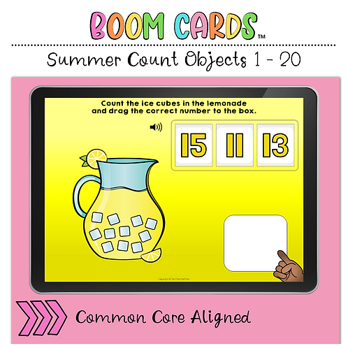 Summer Count the Objects 1 to 20 BOOM LEARNING CARDS Activity