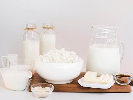 Seminário do Leite e Derivados aborda produção, legislação e tendências do setor lácteo