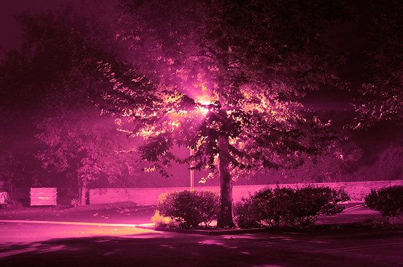 Brett Sperry - Light