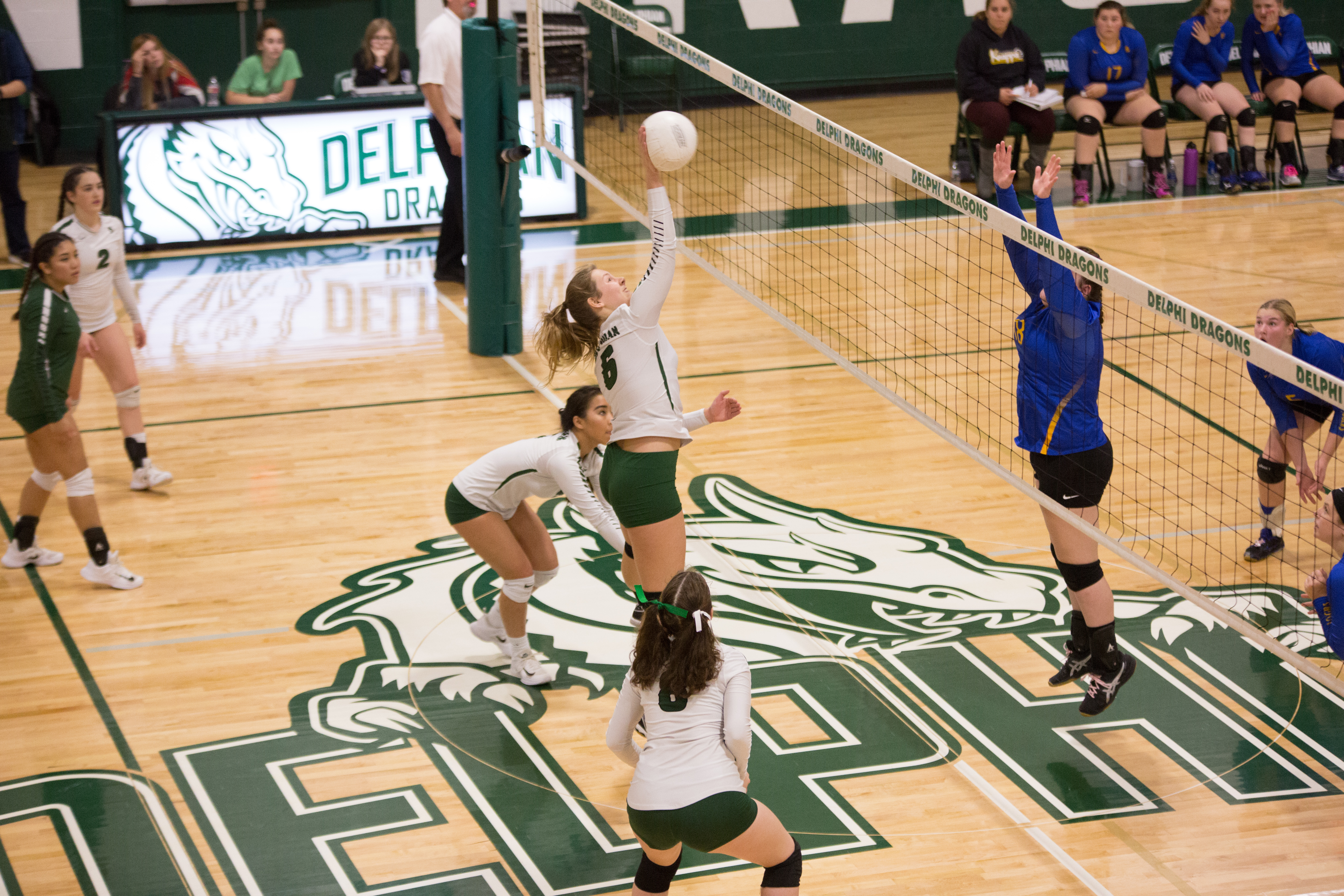 Delphian volleyball