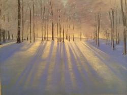 Winter's Shadow