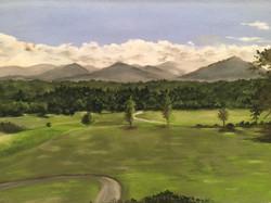 Biltmore Vista