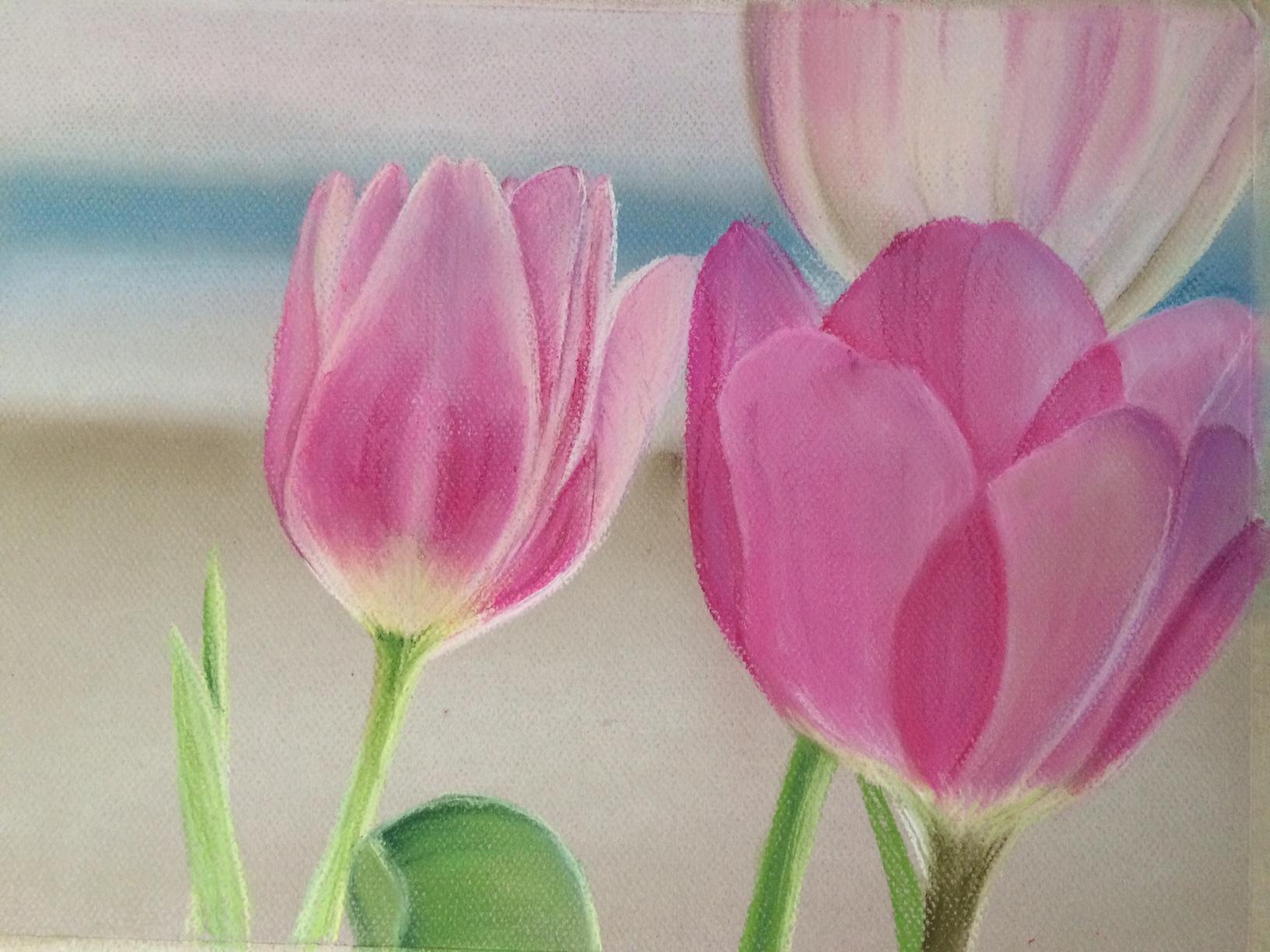 Tulips' Glow