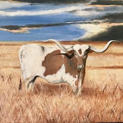 Long Horn No 2