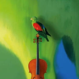 Gloria Friedmann violoncelle