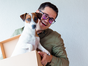 Moving With Your Pet