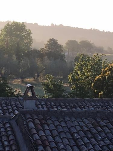 Morning mist along the hills