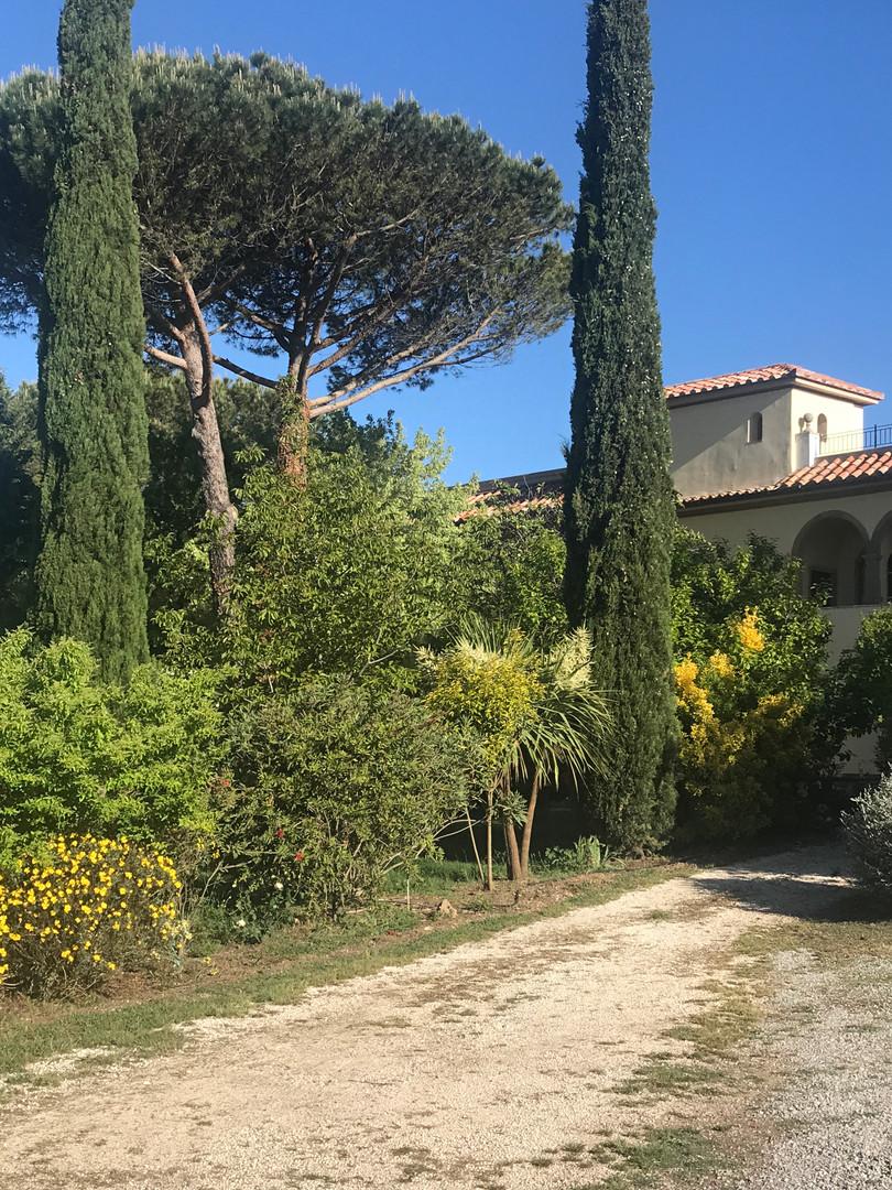 Beautiful gardens at the Villa and Studio