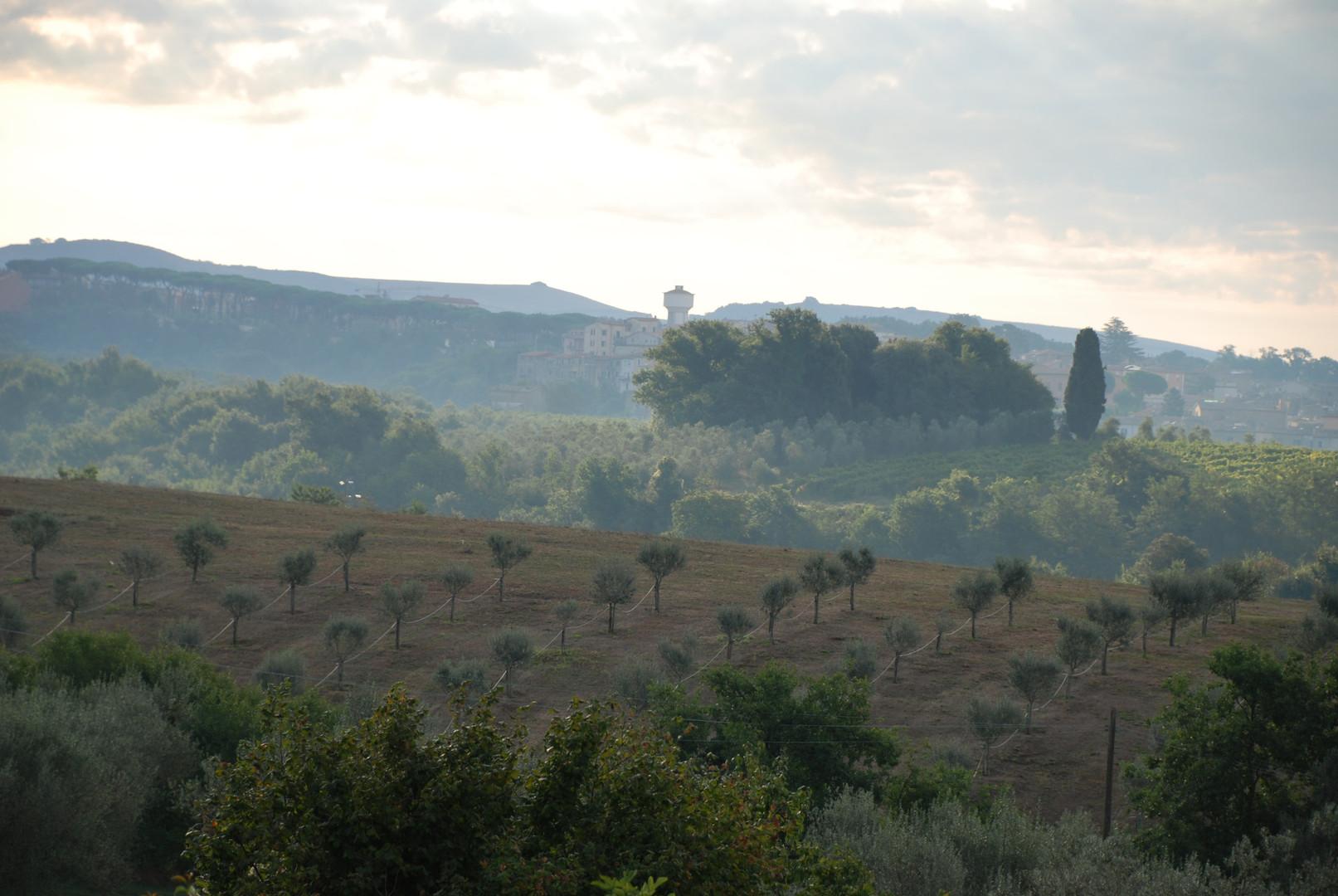 Italian countryside view
