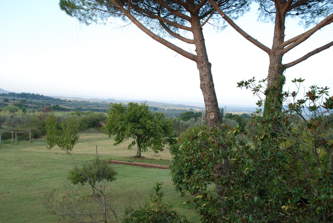 Tuscany in the distance from our gardens