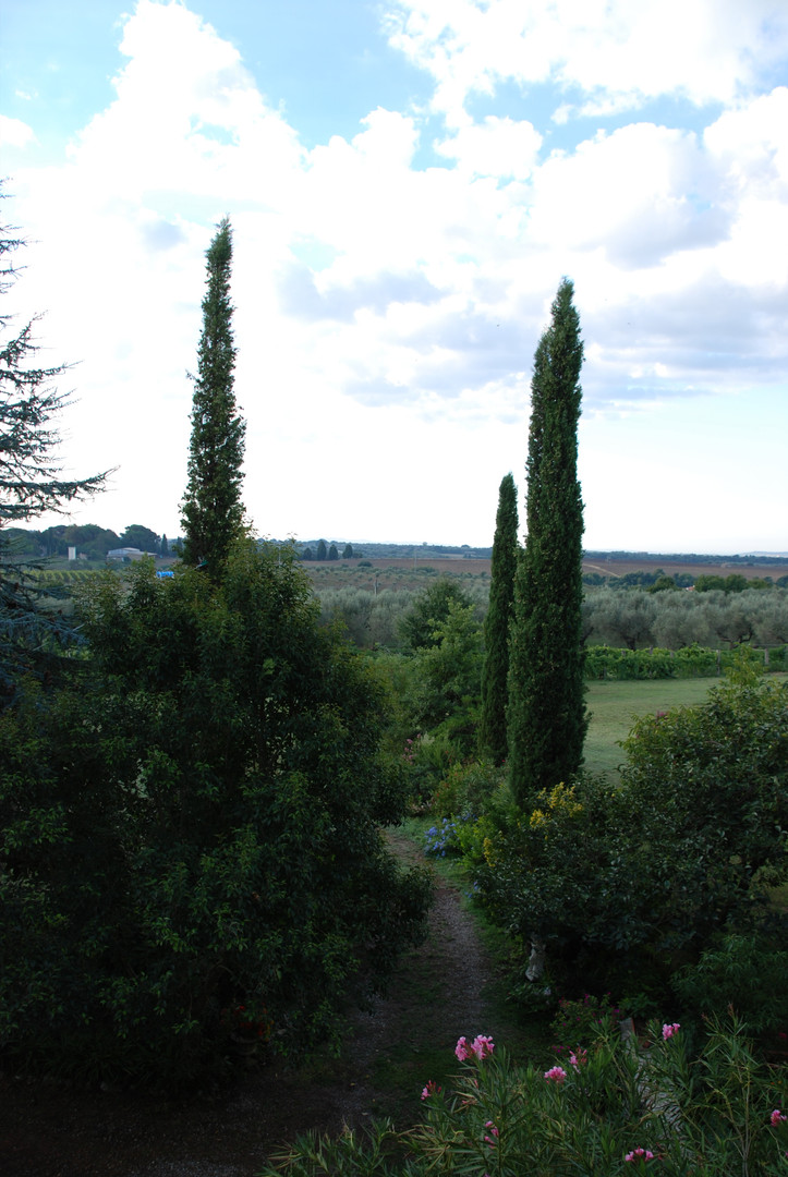 Our gardens, with Tuscany as a backdrop