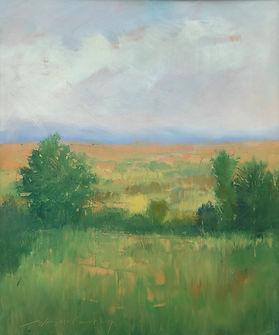 tuscacn foothills 18x15 opmat (1).JPG