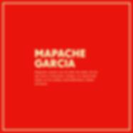 mapache 2.png