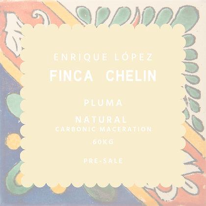 FC-PNCM
