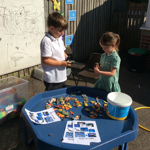 Year 1 Continuous Provision Fun