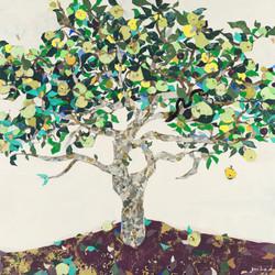 青林檎の木