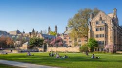Yale Üniversitesi