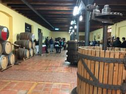 Castejon Şarapçılık