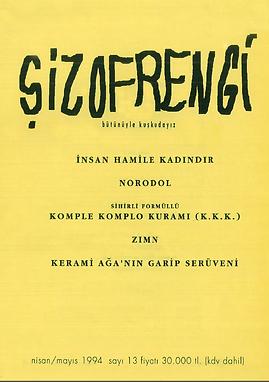 Şizofrengi 13.png