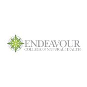 Logo_ENDEAVOUR
