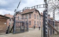 Auschwitz-Birkenau Toplama Kampları