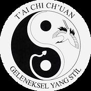 tai chi chuan geleneksel yang stil