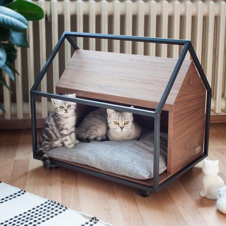 Kedileriniz için Evinizde Nasıl Keyifli ve İlgi Çekici Alanlar Yaratabilirsiniz?
