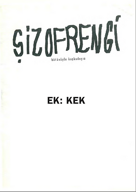Şizofrengi -Kek.png