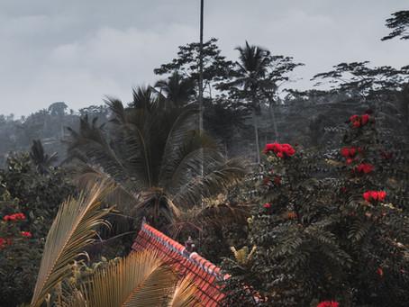 Staying at Sebatu Sanctuary Eco-Resort in Bali