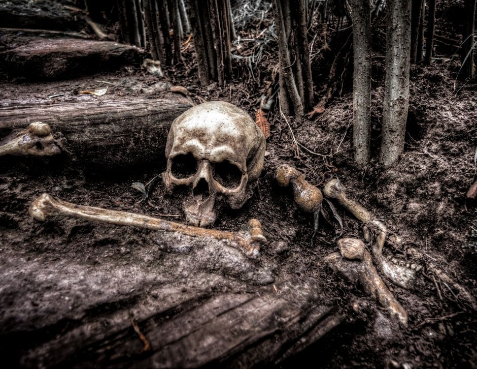 livro, escritor, terror e horror, dica de escrita, escrita criativa