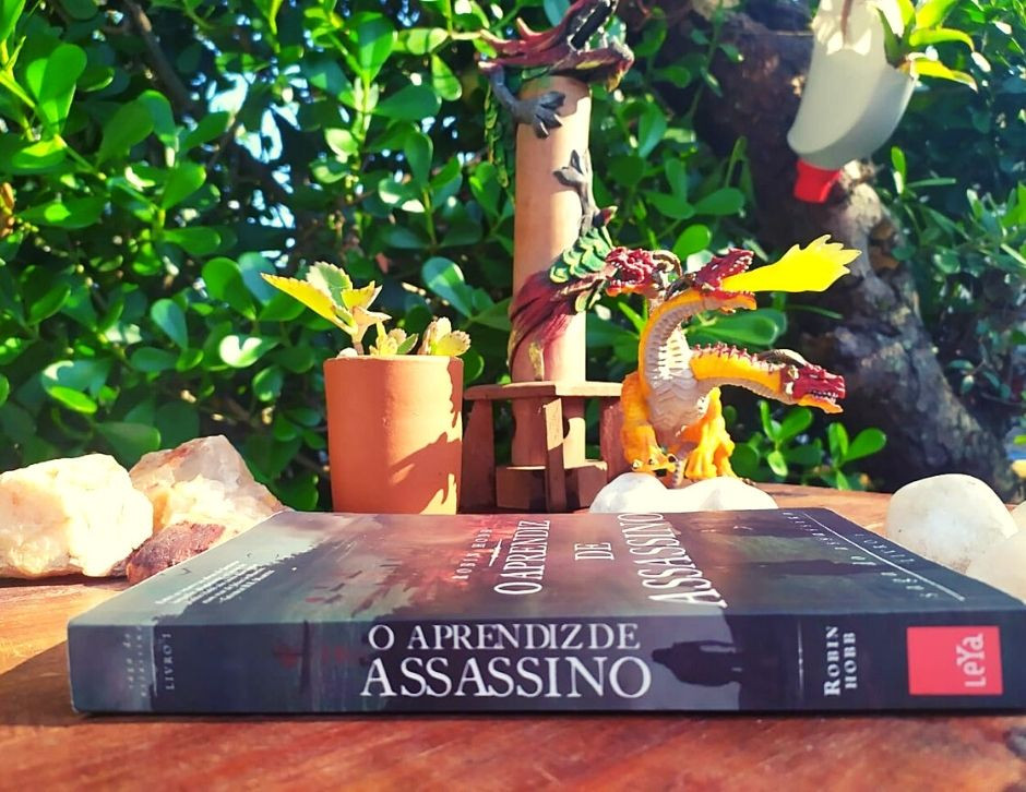 livro, escritor, resenha, a saga do assassino, o aprendiz de assassino