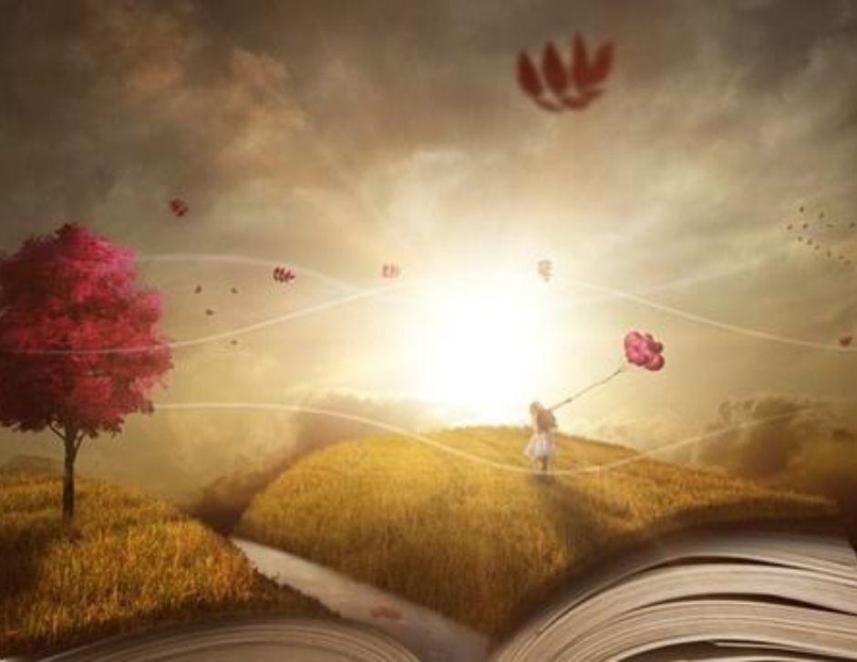 livro, escritor e gênero narrativo