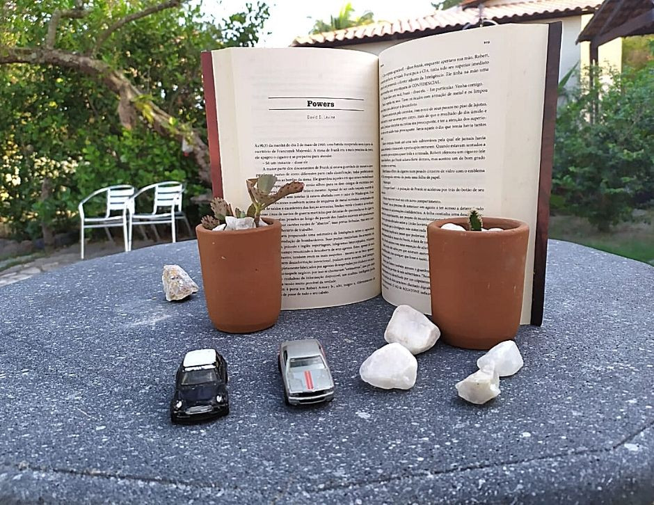 resenha, livro, escritor