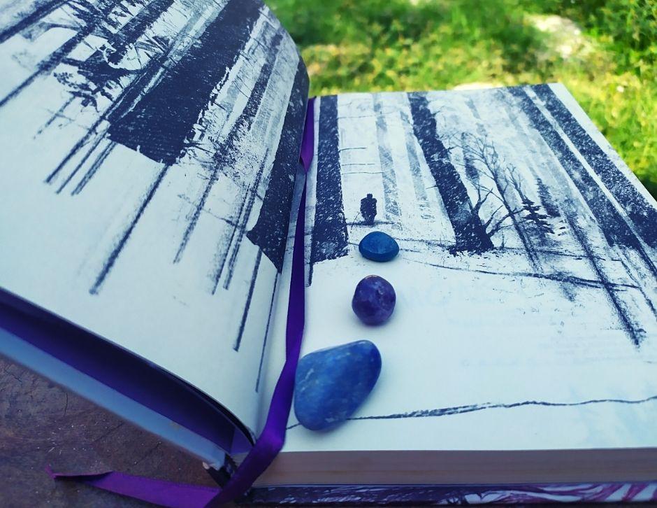 livro, escritor, resenha, resenha do livro, terror