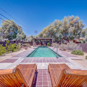 Lupine - Pool