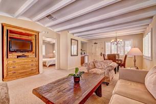 Palo Verde - Living Room