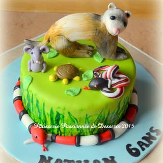 Gâteau Dinoversaire