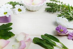 herbs-3141838_1920.jpg