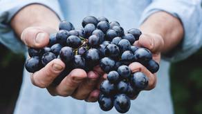 ¿Por qué los antioxidantes ayudan a reforzar tus defensas?