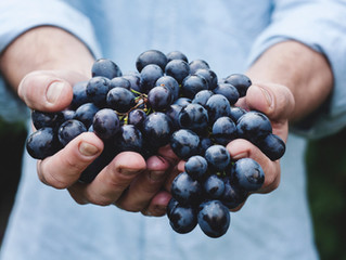 Staff Notes: The Answer Grape