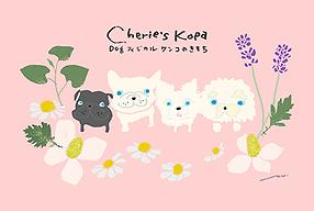 Cherie's Kopa_s.png