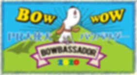 bow2020.jpg